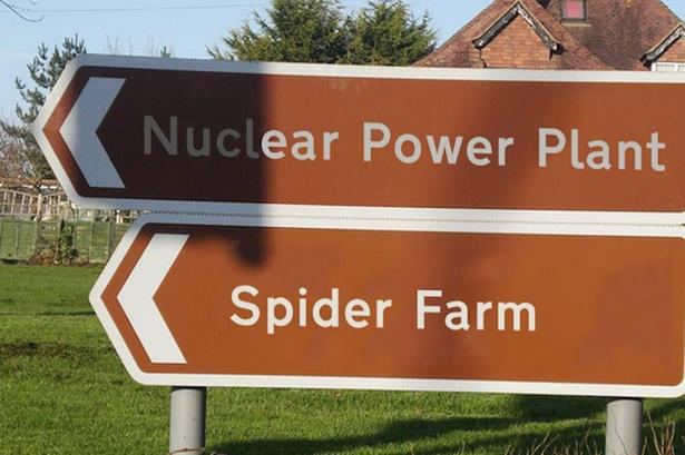 Weird Street Signs